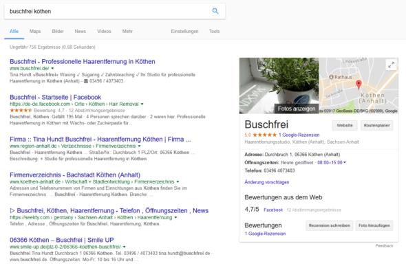 Buschfrei Köthen bei Google