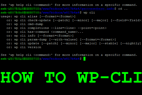 How to WP-CLI