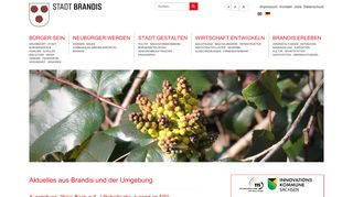 Screenshot: Homepage Stadt Brandis