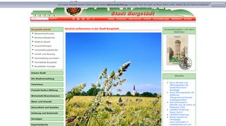 Screenshot: Homepage Stadt Burgstädt