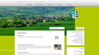 Screenshot: Homepage Stadt Falkenstein